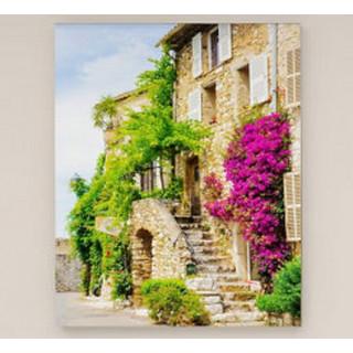 Картина Венеция, улица с клематисом (390x600) Холст