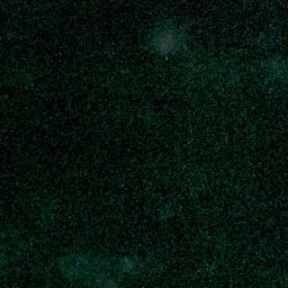 Зелено-малиновый хамелеон