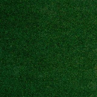 Зелено-золотой хамелеон