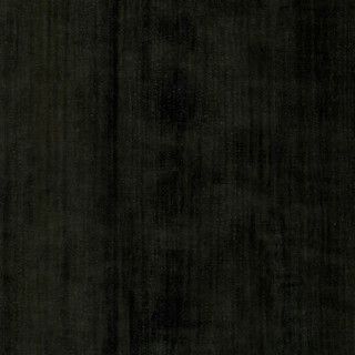Манзония черная
