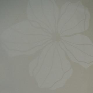Орхидея Светлая