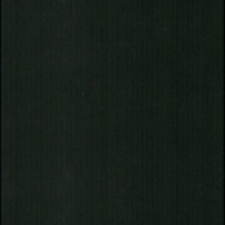 VELLUTO BLACK