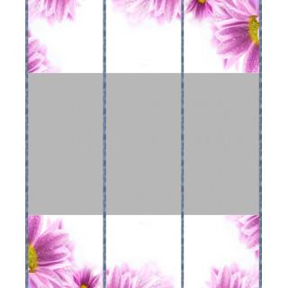 Комбинация фотопечати FS 245(1-2-3)