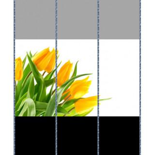 Комбинация фотопечати FB 184(1-2-3)