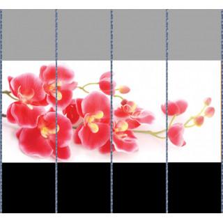 Комбинация фотопечати FB 183(1-2-3-4)