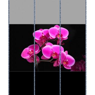 Комбинация фотопечати FB 182(1-2-3)