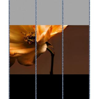 Комбинация фотопечати FB 175(1-2-3)