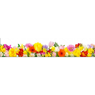 Фотопечать цветы 6