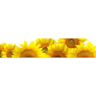 Фотопечать цветы 29