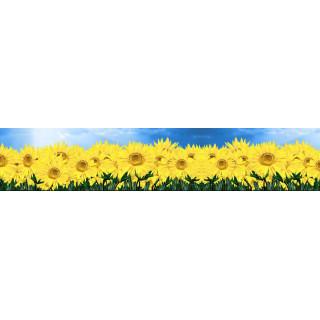 Фотопечать цветы 31