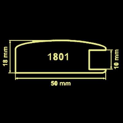 Модель 1801