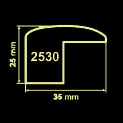 Модель 2530